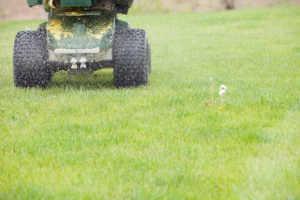 Applying lawn fertilizer