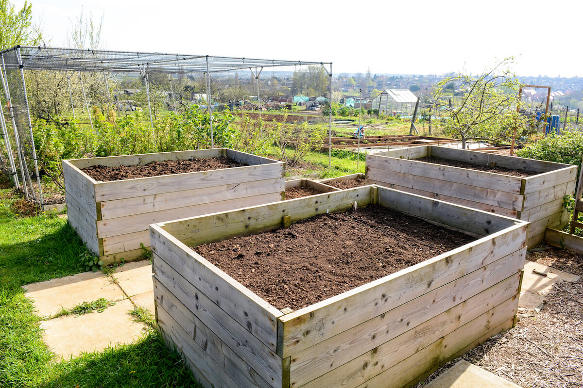 Raised planter box for growing vegetables and flowers