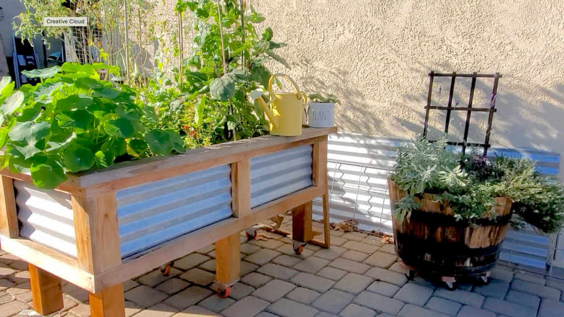 Metal and wood raised bed and container gardens.