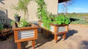 Raised Garden Beds with Legs