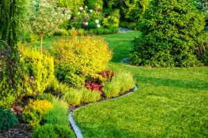 lawn with landscaping shrubs and flowers