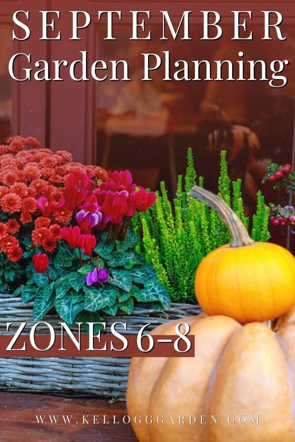 Autumn decor with pumpkins, autumn vegetables and flowers.