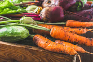 Freshly harvested carrots and beets