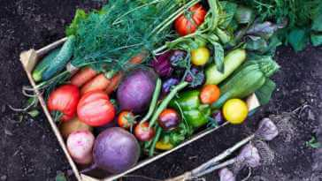 organic vegetables in a wooden box.