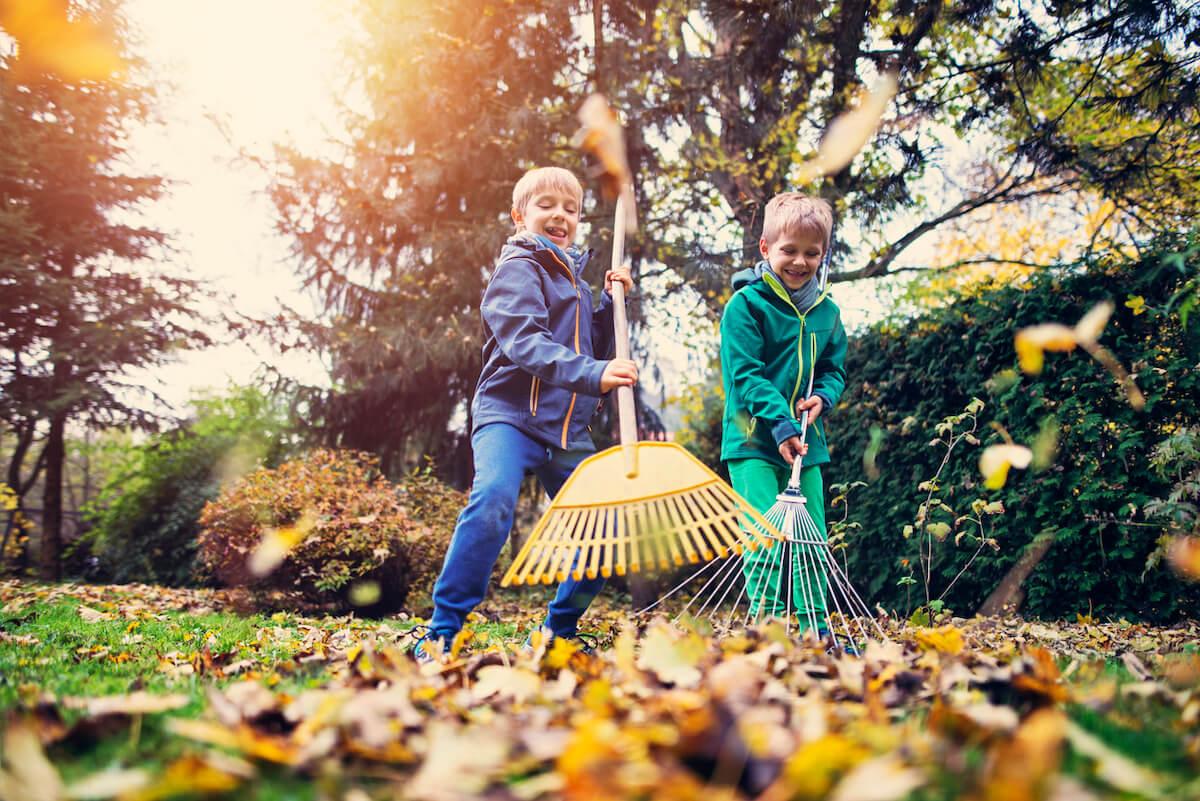 Little boys having fun raking autumn leaves.