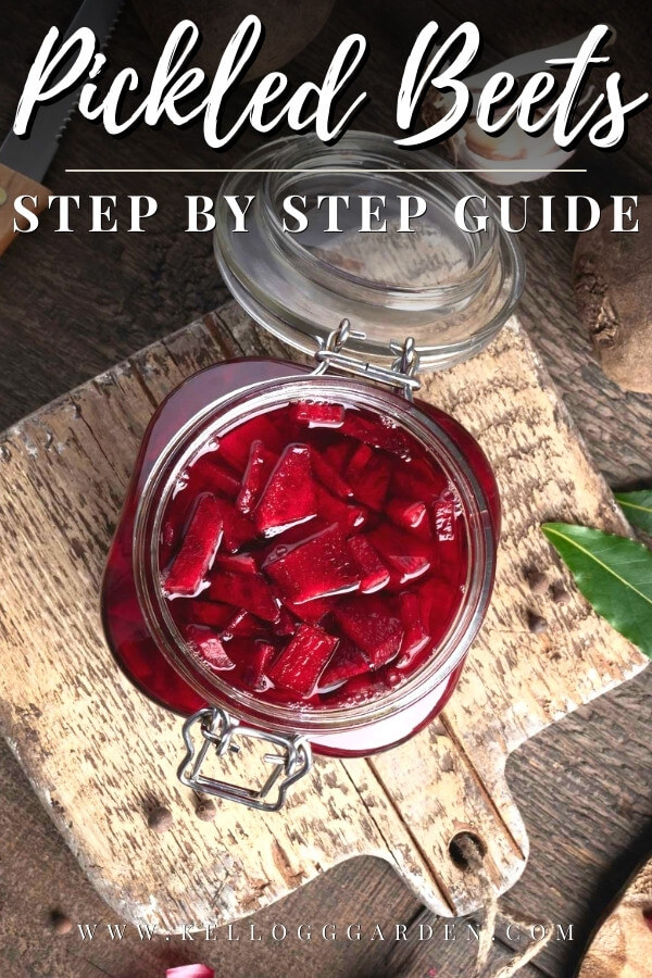 fermented beets in a glass jar