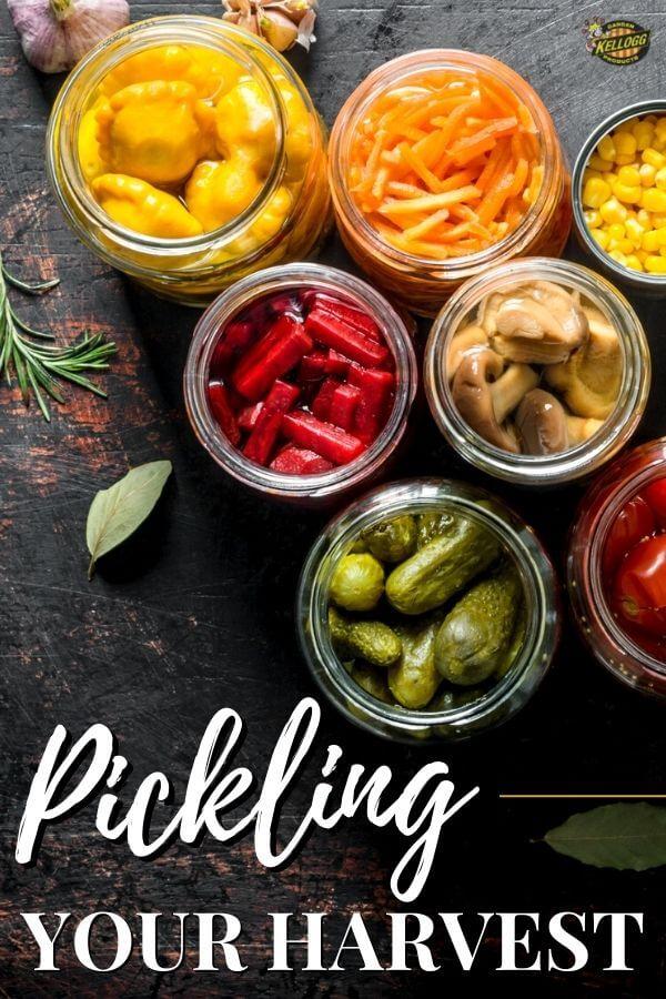 Colorful pickled vegetables